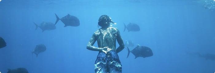 blog-aquarium-700x240