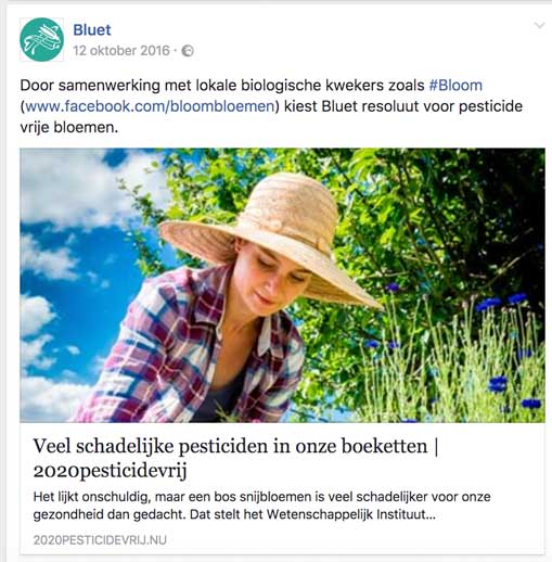 online-marketing-social-media-voorbeeld-bluet.png