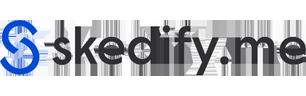 leadstreet-client-skedify-1